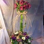 alstro topiary  $50.00